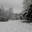Det är rätt otroligt vad vädret kan skifta. Igår på förmiddagen kändes det lite som om våren var på gång. Men framåt kvällen började det snöa igen. När jag vaknade […]